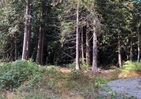 1131 EDMONDS,Roberts Creek,BC,Canada V0N 2W2,Land only,EDMONDS,R2304656